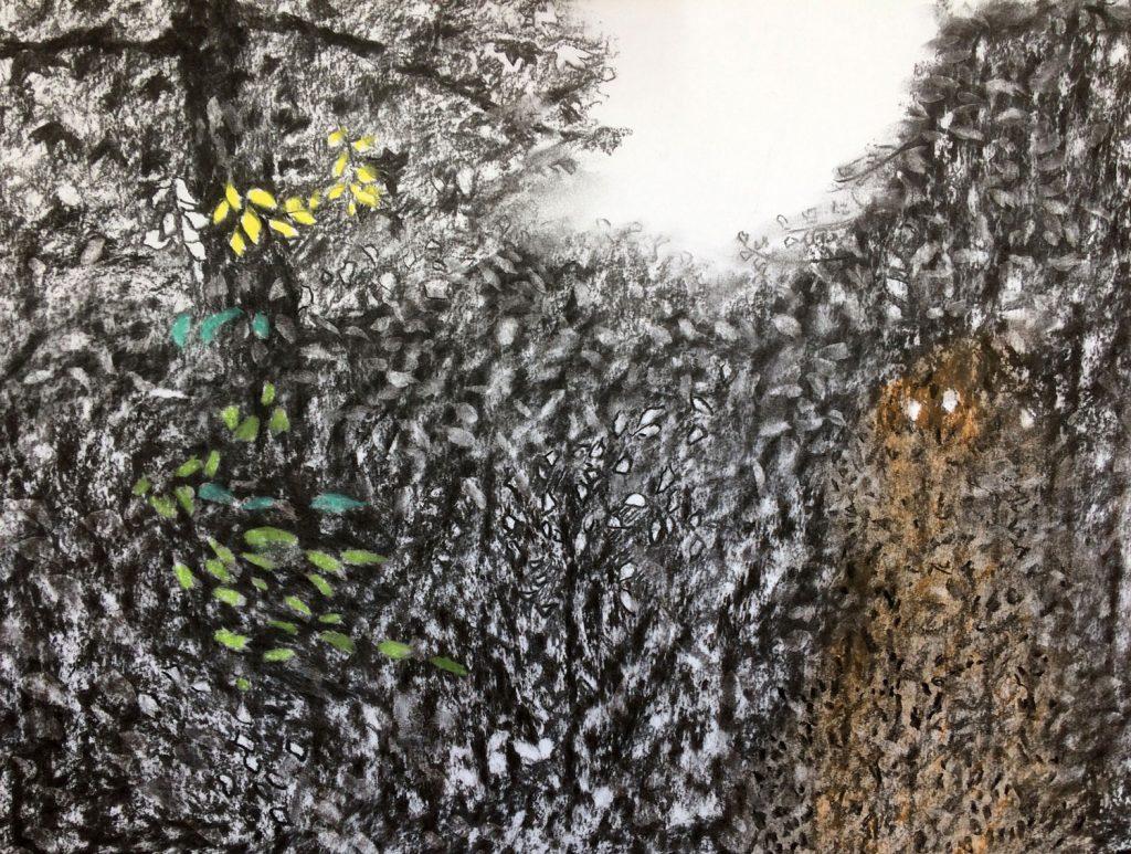 Heg, 2017 - 70 x 50 – gemengde techniek op papier