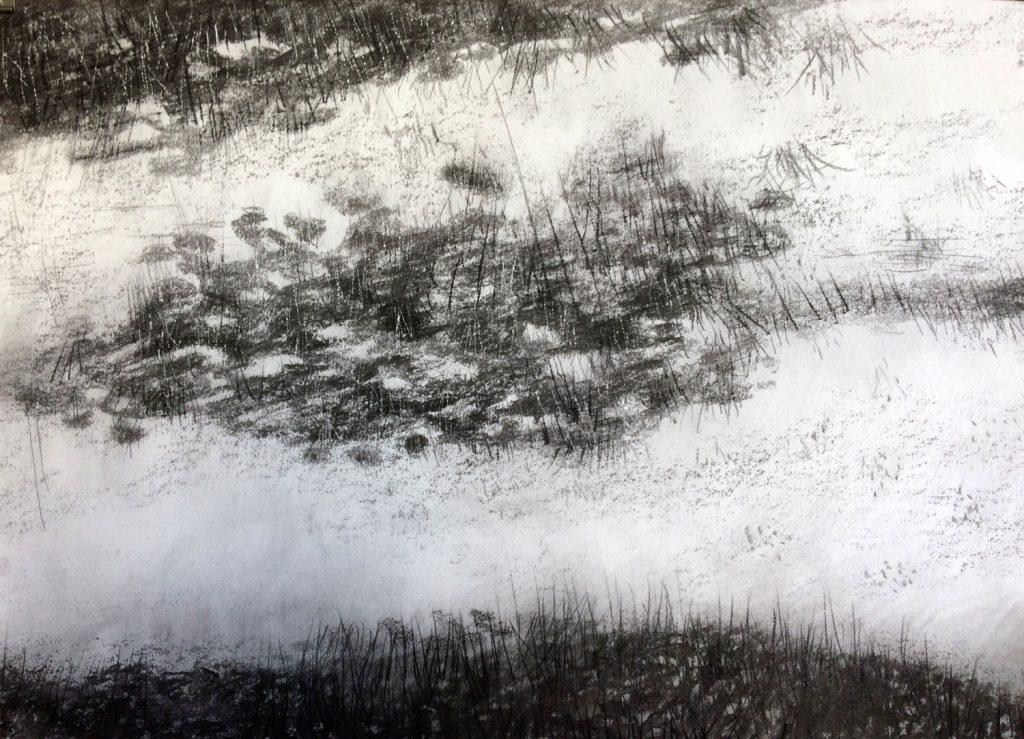 Moeras 1, 2016 - 70 x 50 – gemengde techniek op papier